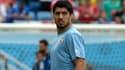 Luis Suarez est désormais exclu du Mondial 2014.