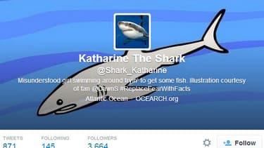 Le compte twitter du requin Katharine.