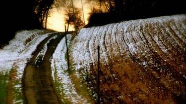 """"""" Le froid"""". Paysage du 7 février 2015, qualifié de """"pré-posthume"""" par le photographe."""